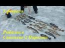 Рыбалка в Подмосковье форель щука осетр карп амур сиг пелядь