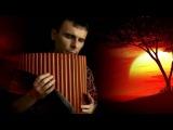 Одинокая Флейта. Lonely Flute. Love me tender. Панфлейта. Panflute.