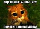 Сергей Маляренко фото #45