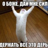 Анкета Сергей Попов