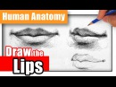 How to Draw the Lips the Easy Way - Different Angles