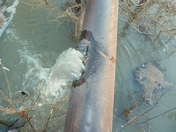 Житель Чистополя опубликовал видео загрязнения канализационными водами местной реки Ржавец