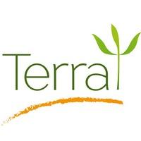 """Логотип Центр гуманистической психологии """"TerraPsy"""""""