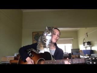 В этом видео прекрасно все_ и песня, и девушка, и кот