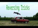Unreal Parkour - Reversing Tricks