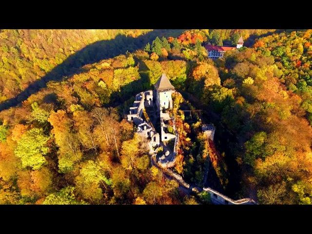 Золота осінь. Аерозйомка