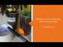 Варианты пометки сорта для комнатных цветов (из подручных средств)