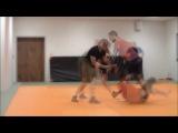 Historical Ringen Workshop  Level 1 Summary... without groundfighting