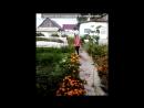 """«С моей стены» под музыку James Blunt  - You`re Beautiful   (Архив """"Радио Европа Плюс: Еврохит TOP-40""""  Итоговый хит-парад за 20"""