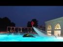 Флайборд Шоу в бассейне в исполнении Фрэнки Запаты