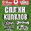 Фестиваль ЧАЙКА-2015 в Воронеже!