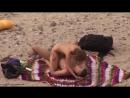 нудисты секс на пляже 11 #swing #girls #sex #мжм #жмж #мжмж #секс #гупповойсекс #групповушка [720p]