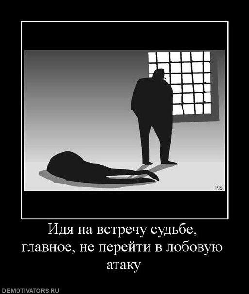 Фото №420521829 со страницы Романа Тарасова