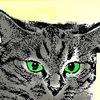 CatWar