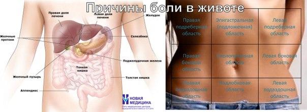 Лечение позвоночника в воронеже антипко
