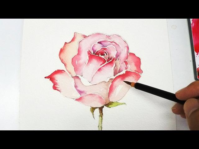 [LVL4] Rose Painting Tutorial