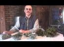 Веники для бани травяные мочалки Лечебные травы зверобой малина иван чай Бер