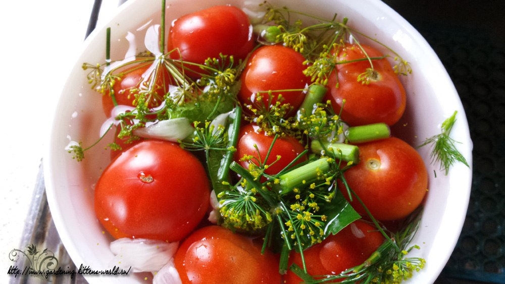 Соленые помидоры