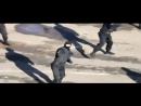 Русский спецназ в действии СОБР ФСБ...