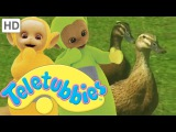 Teletubbies: Ducks - Full Episode