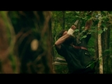 Дикая кухня / Kings of the Wild / 1 сезон 4 серия / Мексика - тропический лес