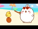 Molang - The Coconut  Cartoon for kids