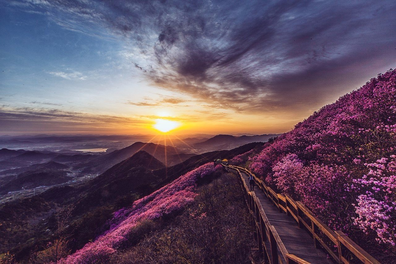 Пусан, Корея