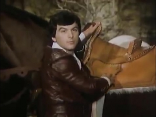 Третий принц - чешская сказка (1982) В главных ролях - Либуше Шафранкова и Павел Травничек