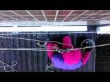 Герметизация и Утепление Межпанельных Швов над козырьком Балкона Высотные Работы Днепропетровск