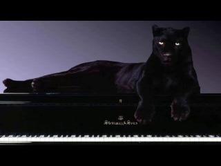 Красивая Расслабляющая музыка для медитации и релаксации Пианино