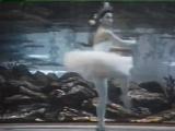 Р. Щедрин. Сказка о Коньке-Горбунке (фильм-балет Большого театра; 1961 г.)