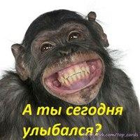 Богдан Янтків, Жмеринка - фото №7