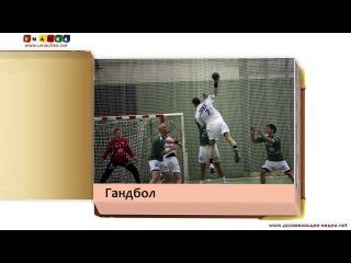 Развивающее видео КАРТОЧКИ ДОМАНА Виды спорта Часть 1