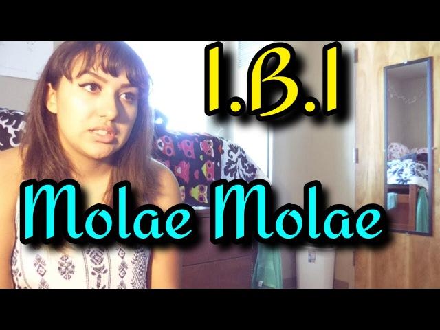 I.B.I(아이비아이) - MOLAE MOLAE(몰래몰래) MV Reaction