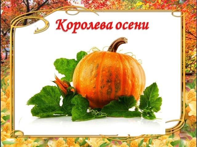 ЗОЛОТЫЕ РЕЦЕПТЫ из тыквы Рецепты полезных блюд из тыквы для здоровья и красоты смотреть онлайн без регистрации