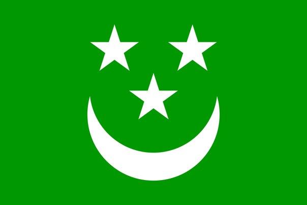Флаг Северо-Кавказского эмирата, существовавшего на территории Дагестана и Чечни...