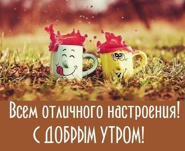 https://pp.vk.me/c630822/v630822831/4f2ab/1eQmpDTUz3w.jpg