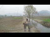 GoPro- Слепой человек и его безрукий товарищ сажают лес