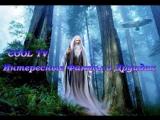 Интересные факты о друидах