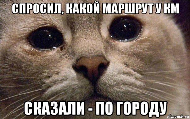 https://pp.vk.me/c630823/v630823479/460b5/YTCdho4ZlPc.jpg