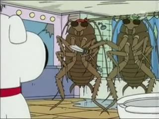 Гриффины Злые тараканы