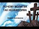 ПОЧЕМУ МОЛИТВА ТАК НЕОБХОДИМА ...Андрей Шаповалов