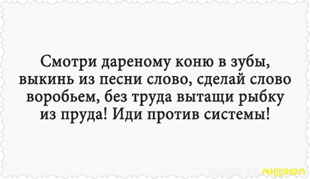 VXpWfDdZ644.jpg