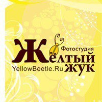 yellowbeetlegroup