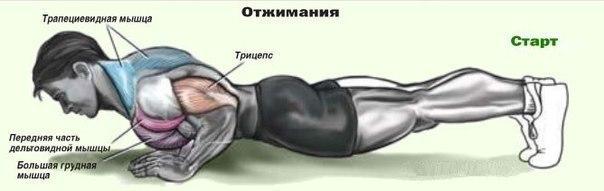 Фото №424657813 со страницы Абдулкадира Исакова