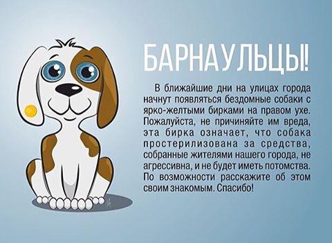 Геля Киреева | Москва
