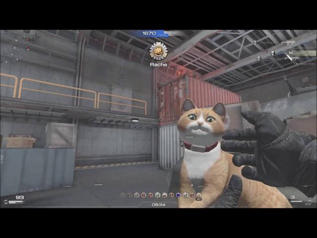 Cat Gun (M1A0) TDM I Skill Special Force 2