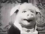 Death In June - All Pigs Must Die