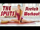 The Splits Stretch Routine How To Do The Splits Flexibility Training Beginners Exercises Workout