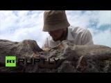 В Краснодарском крае обнаружена плита с надписью персидского царя